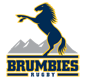 Brumbies (2)